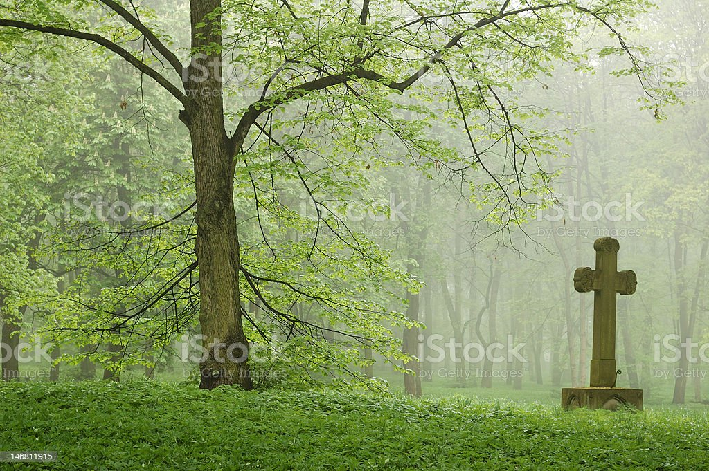 Cemetery. royalty-free stock photo