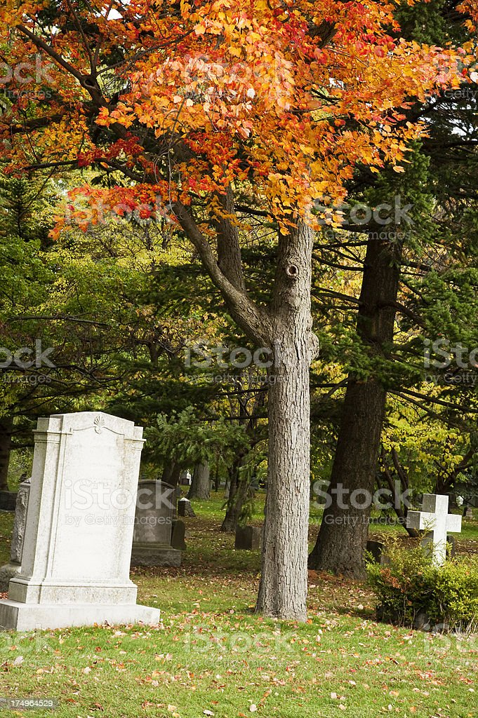 Cemetery stock photo