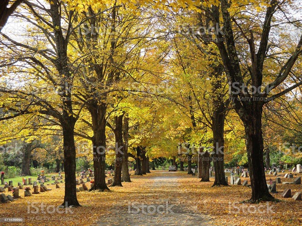 Cemitério foto royalty-free