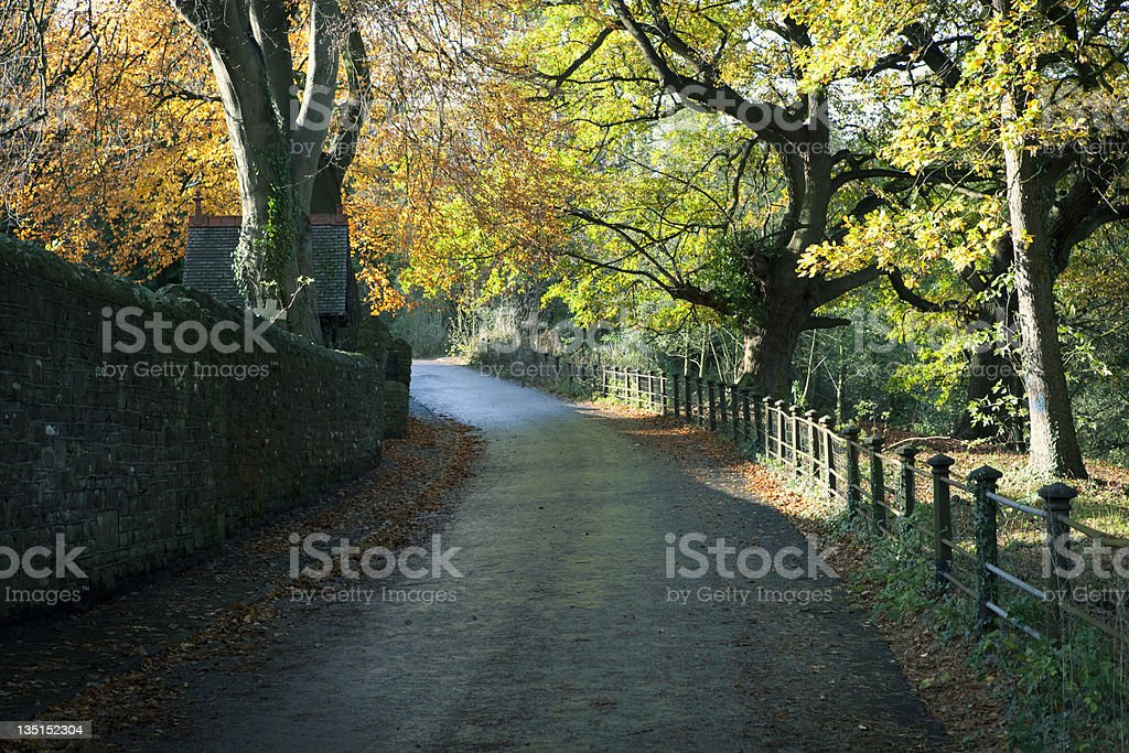 Cemetery road winding through wooded area and beside wall. stock photo