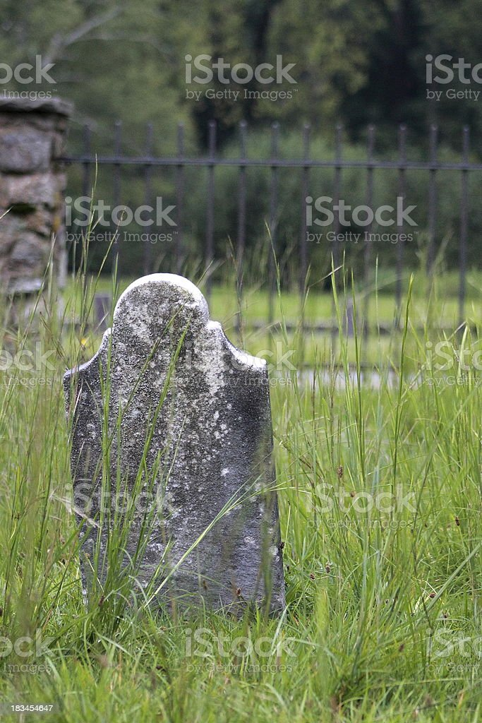 Cemetery Single Stone Overgrown Grass royalty-free stock photo