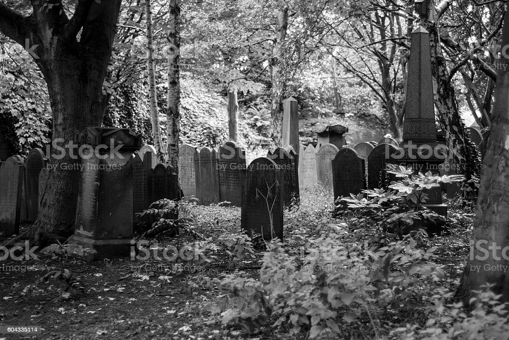 Cemetery tombstone stock photo