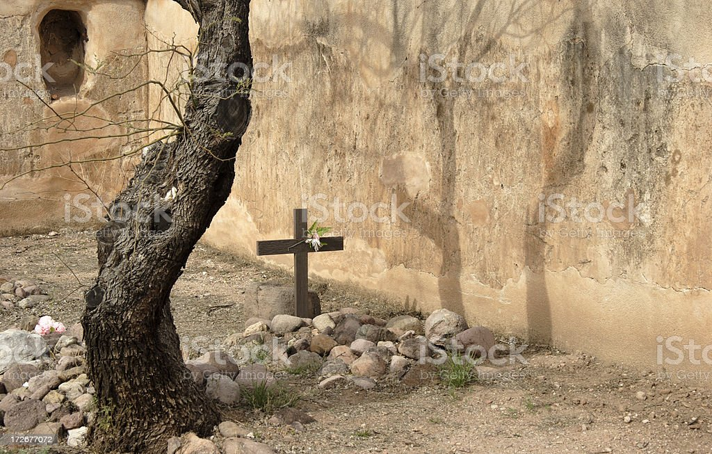Cemetery with Tree and Shadow stock photo