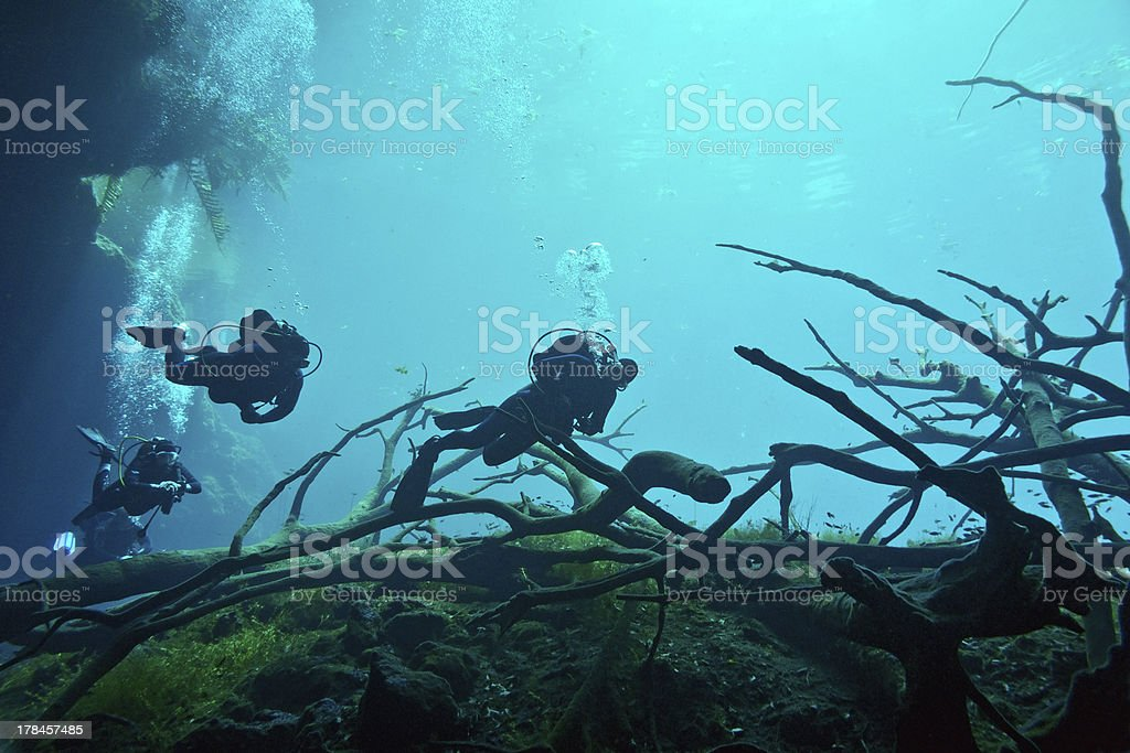 Cenote underwater stock photo