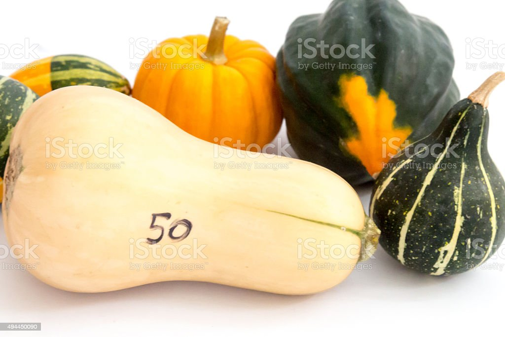 50 cent butternut squash and farmer's market gourds stock photo