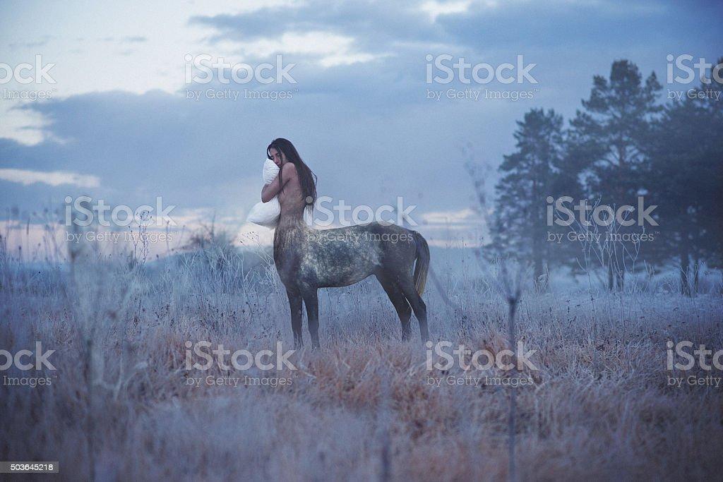 centaur woman sleep standing up stock photo