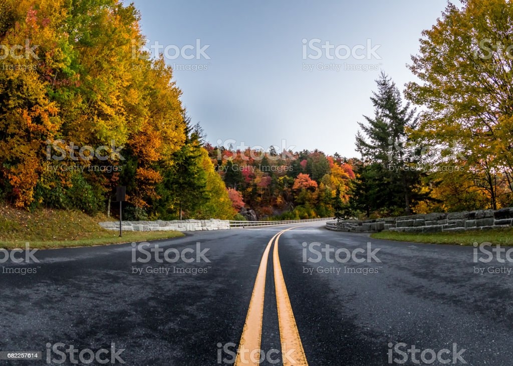 Center of Road In Fall stock photo