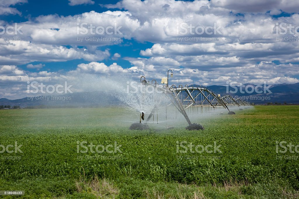Center pivot agricultural irrigation system stock photo