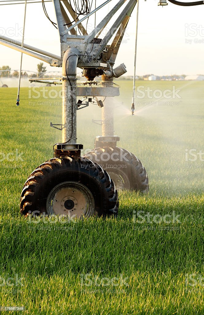 Center pivot Sprinkler in a farm field stock photo