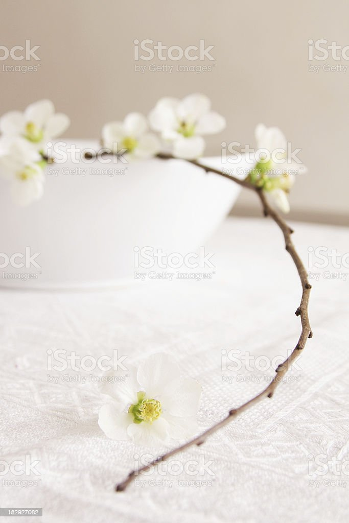 Centerpiece in white stock photo
