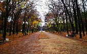 Central alley Gorky Park