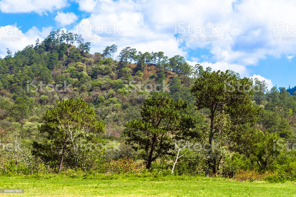 Central American Landscape stock photo