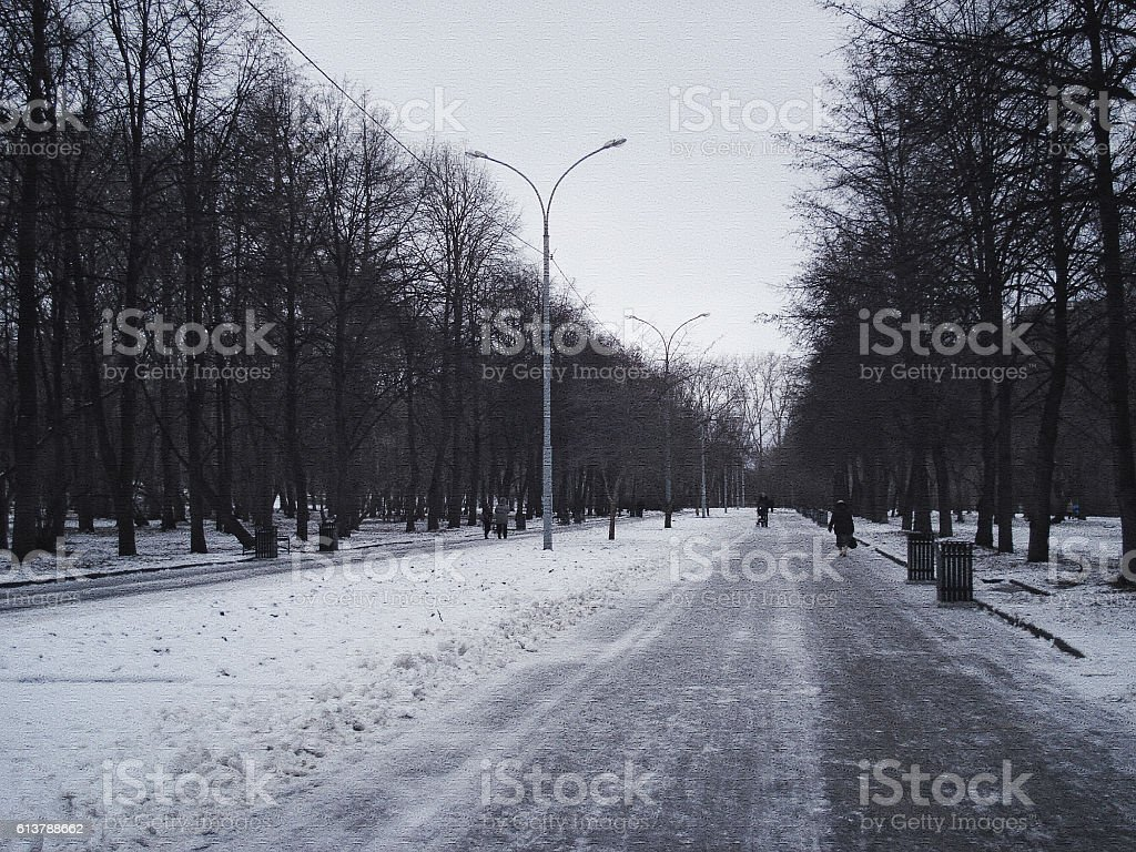 Central avenue in the park.  November. Beginning of winter stock photo