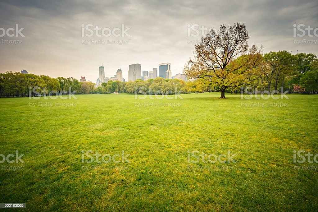 Central park at rainy day stock photo