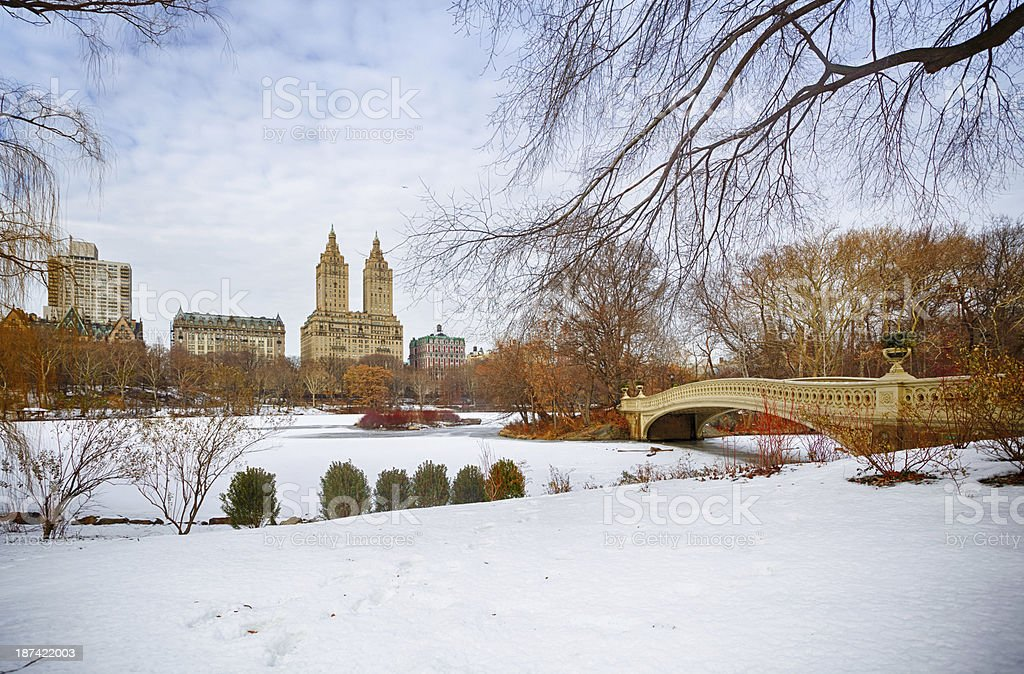Central Park at winter stock photo