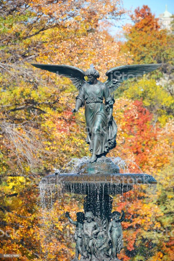 Central Park Autumn stock photo