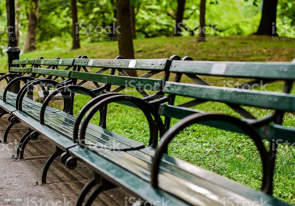 Central Park Bench stock photo
