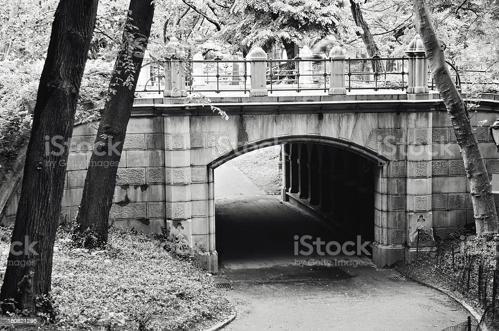 Central Park Bridge stock photo