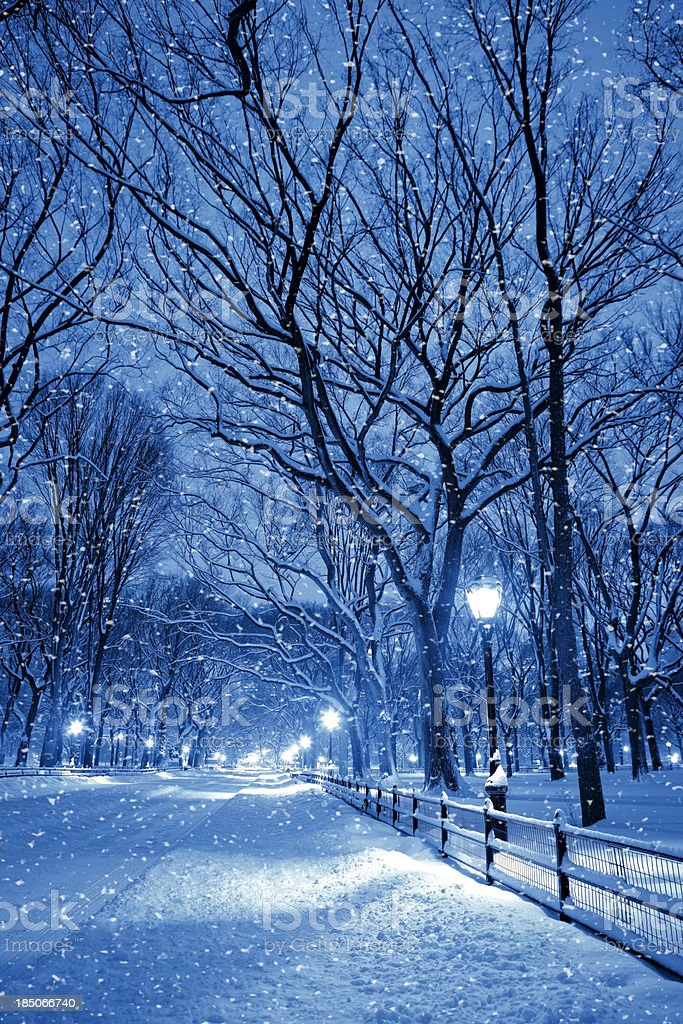 Central park by night during snow storm stock photo