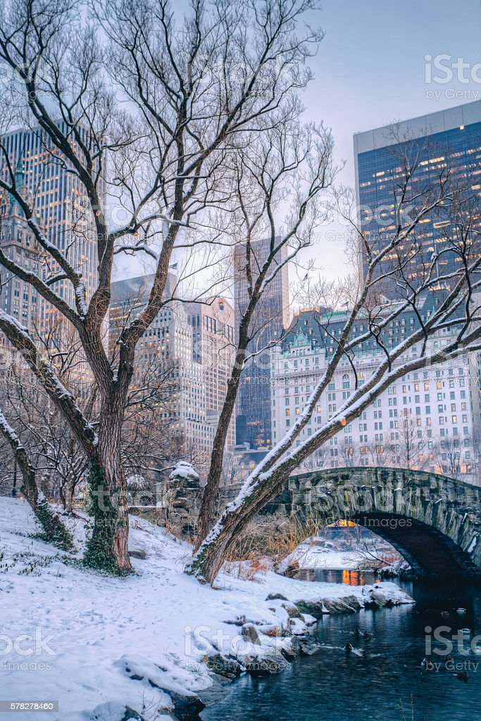 Central Park during winter stock photo