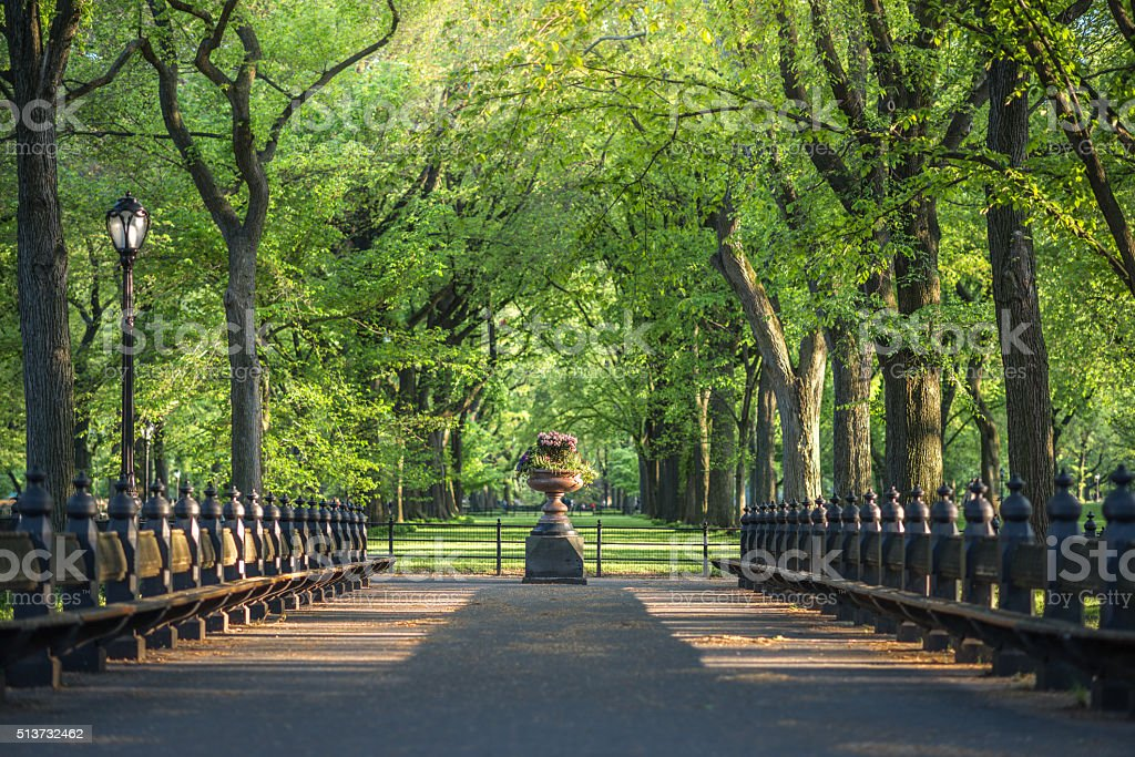 Central Park, Image of The Mall area in Central Park stock photo