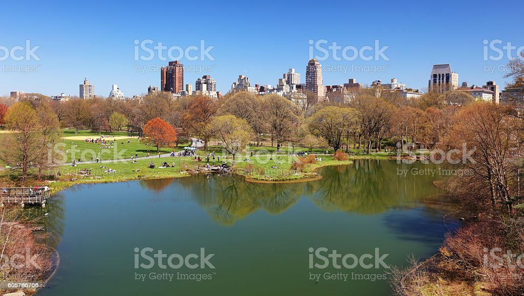 Central Park in New York - Turtle pond stock photo