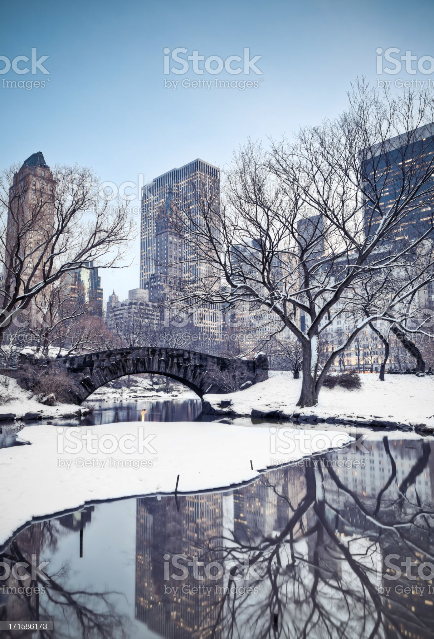 Central Park in winter royalty-free stock photo
