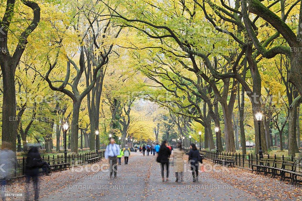 Central Park Mall - Autumn - New York stock photo