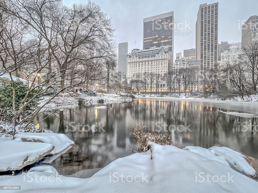 Central Park, New York City blizzard stock photo