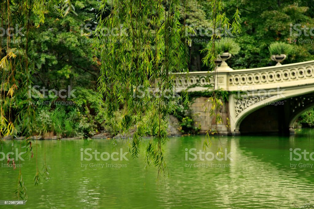 Central Park. New York City bow bridge in autumn day stock photo