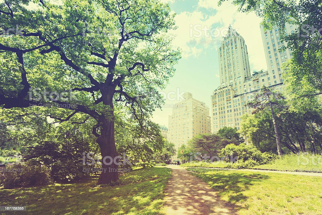 Central Park New York City royalty-free stock photo
