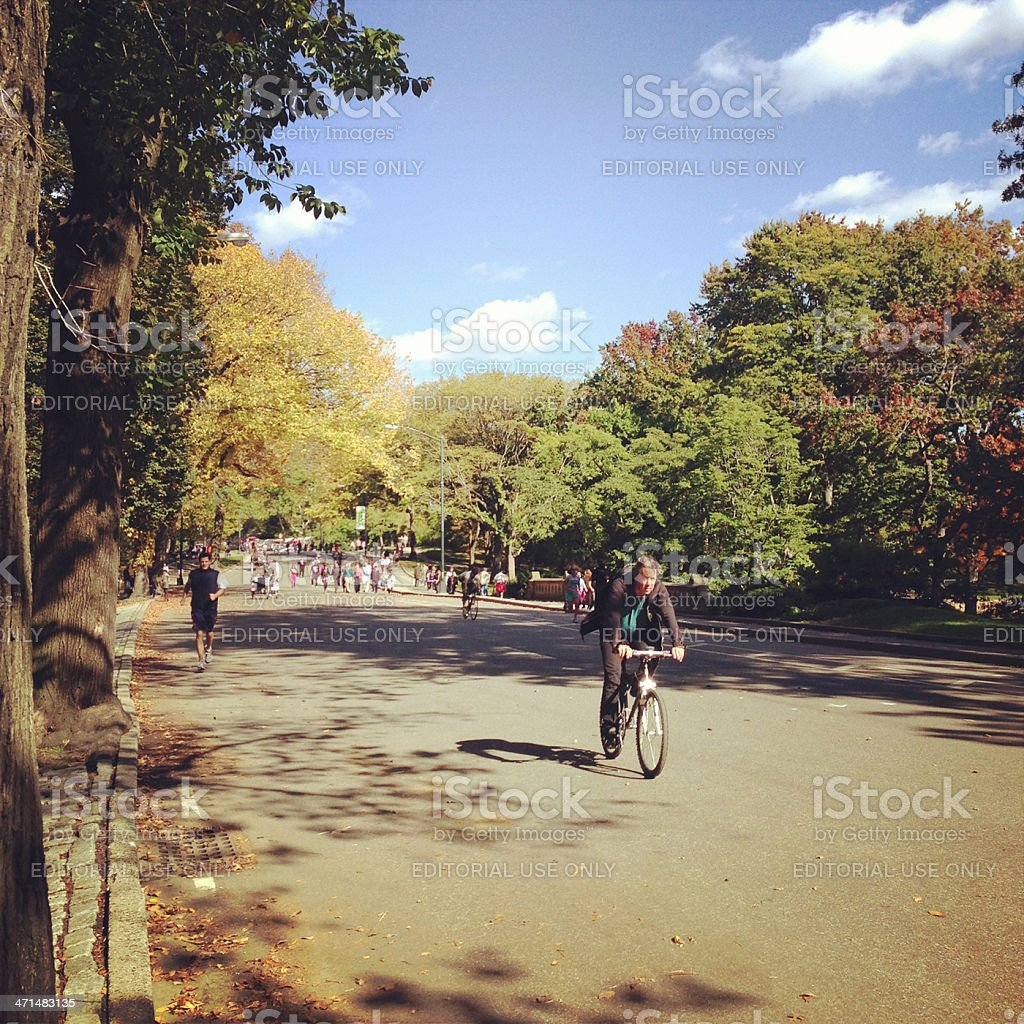 Central Park New York royalty-free stock photo