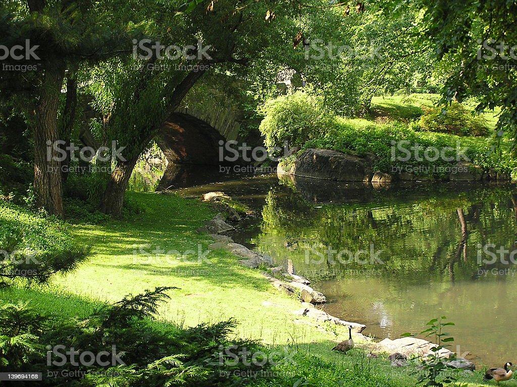 Central Park Pond stock photo