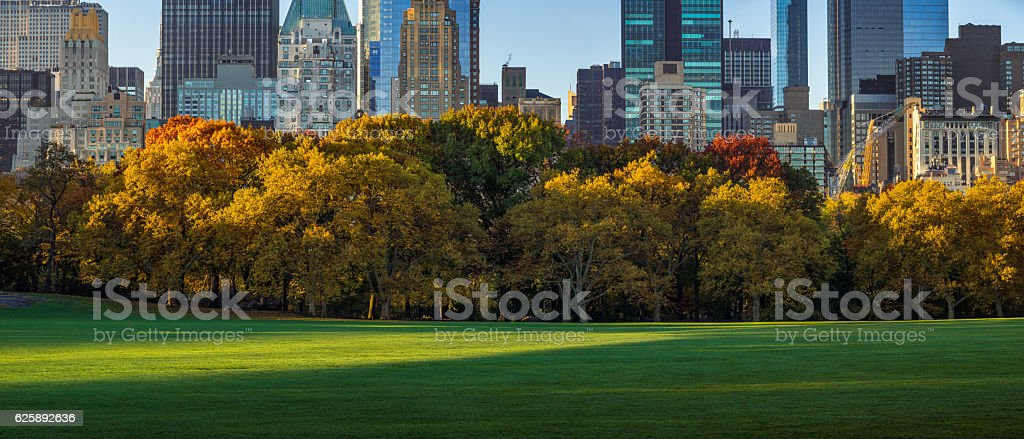 Central Park Sheep Meadow and skyscrapers in fall. New York stock photo