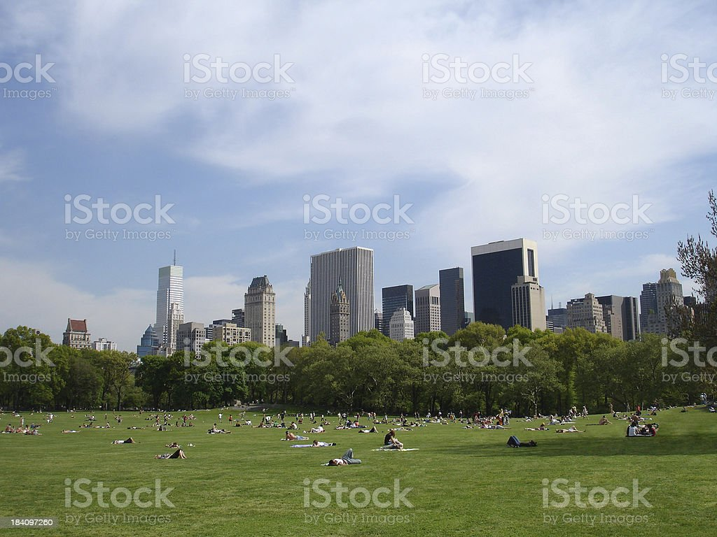 Central Park Sunbathers royalty-free stock photo