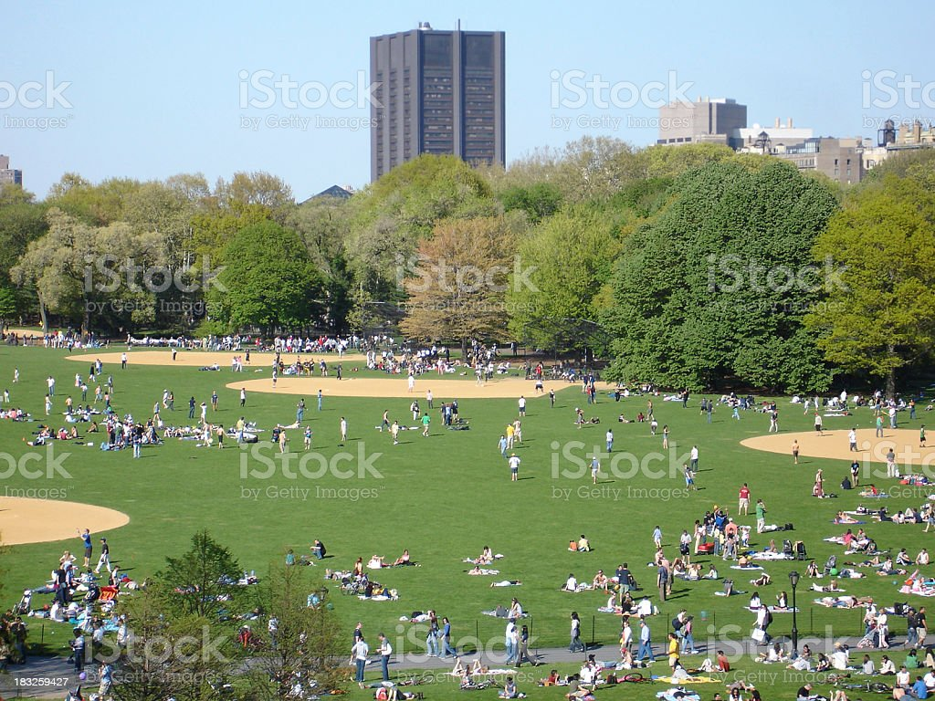 Central Park: The Great Lawn royalty-free stock photo