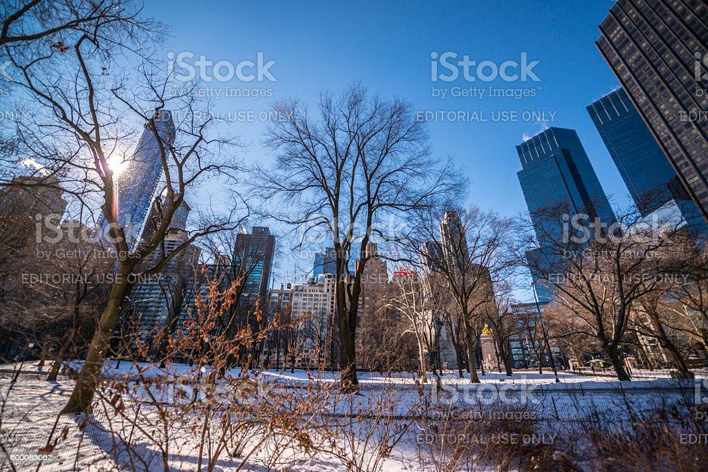 Central park under snow, New York, USA stock photo