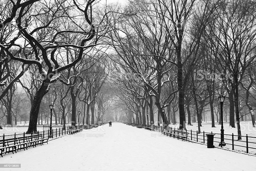 Central Park view # 5 XL royalty-free stock photo
