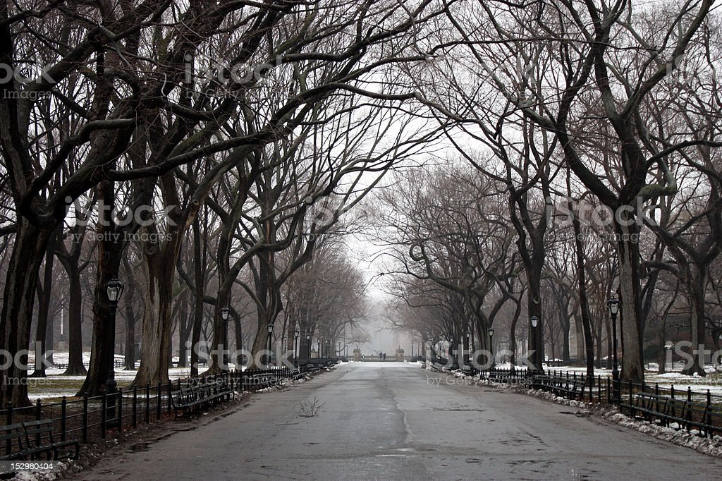 NYC Central Park Winter stock photo