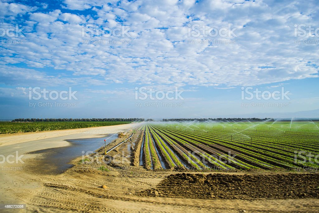 Central Valley, CA stock photo