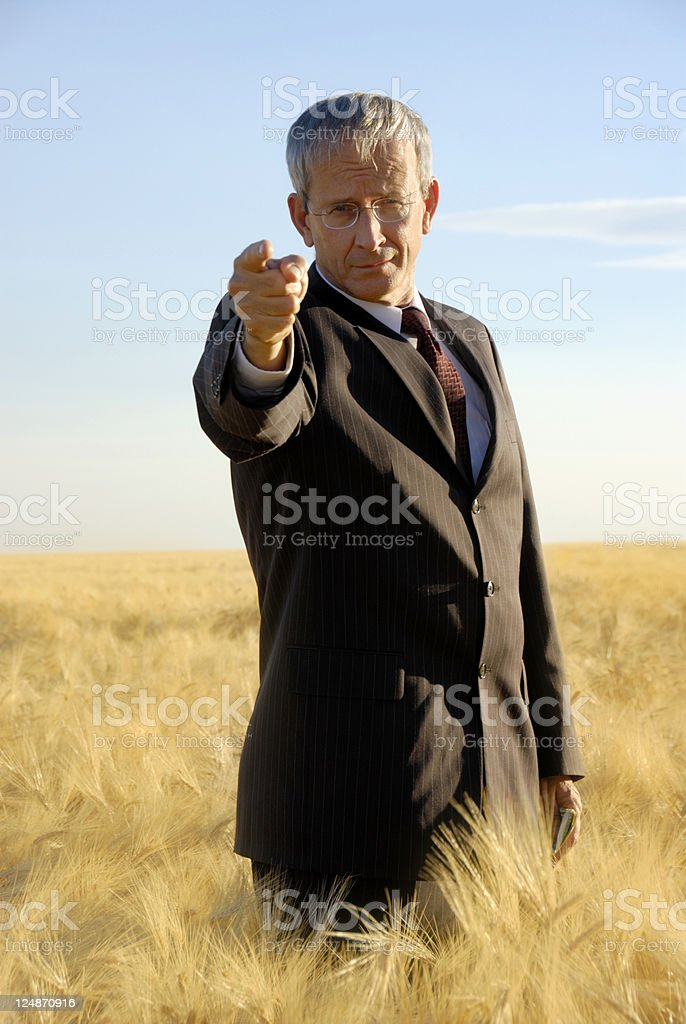 CEO/President royalty-free stock photo