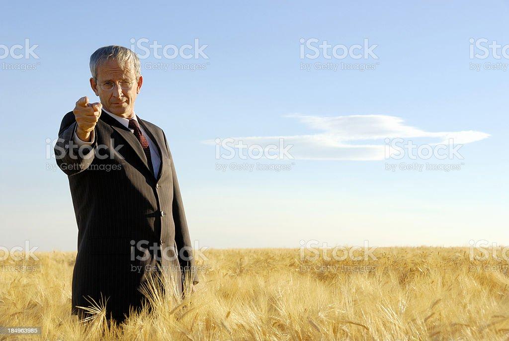 CEO/President royalty-free stock photo