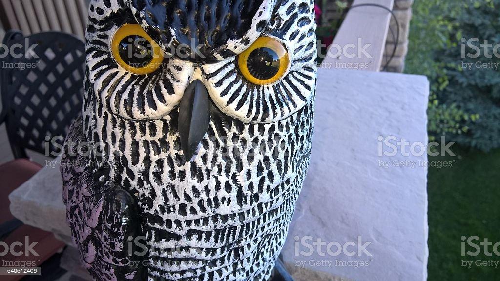 Ceramic Owl Close-Up stock photo
