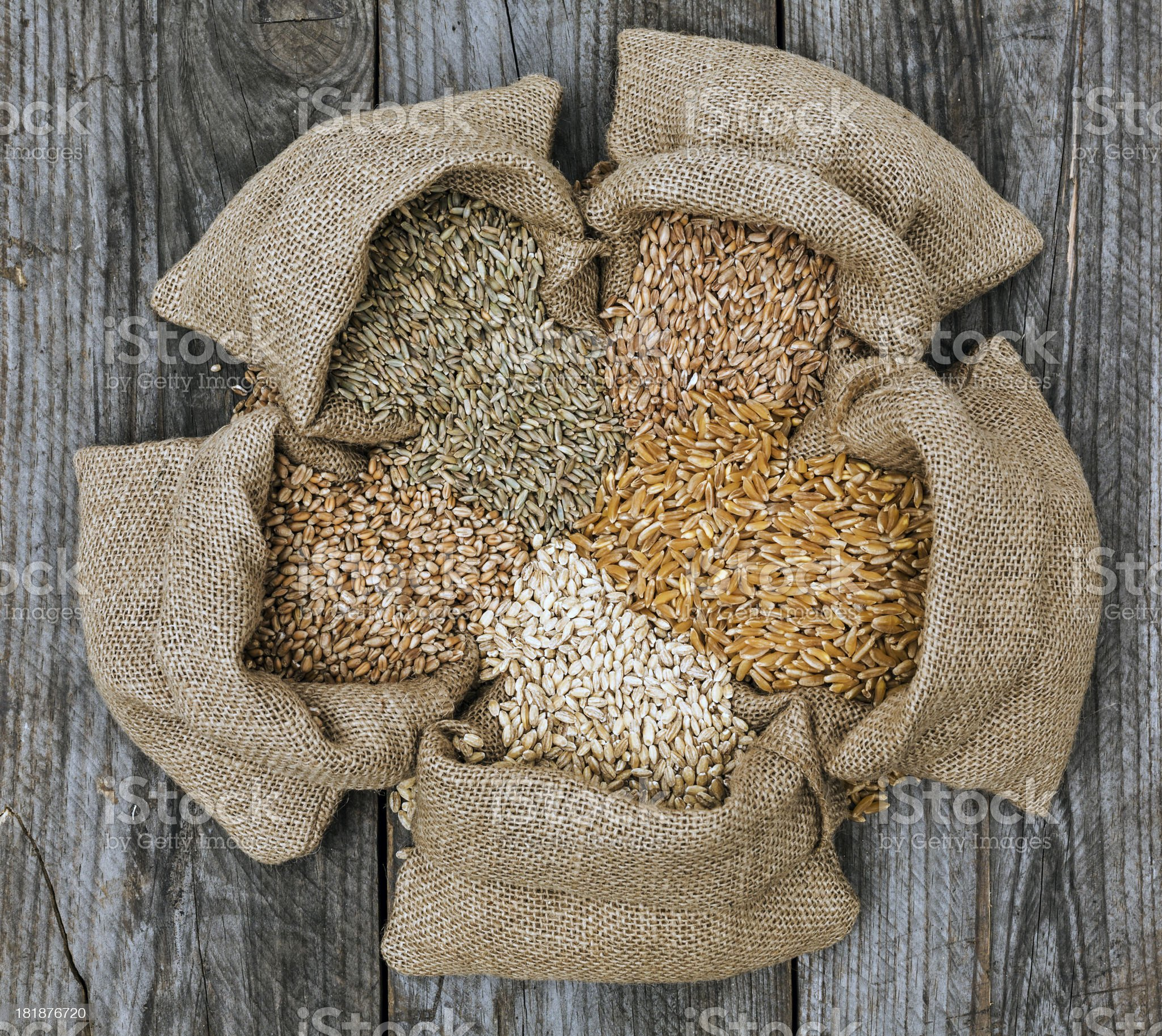 Cereal grain royalty-free stock photo
