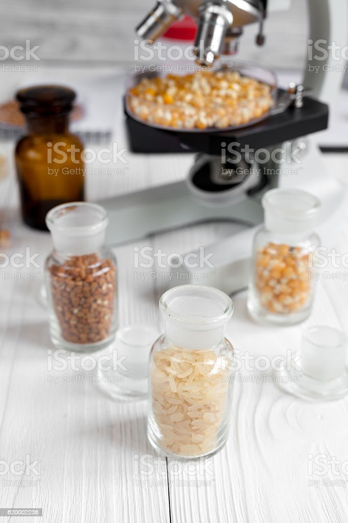 cereals in glass vials for analysis on wooden background stock photo