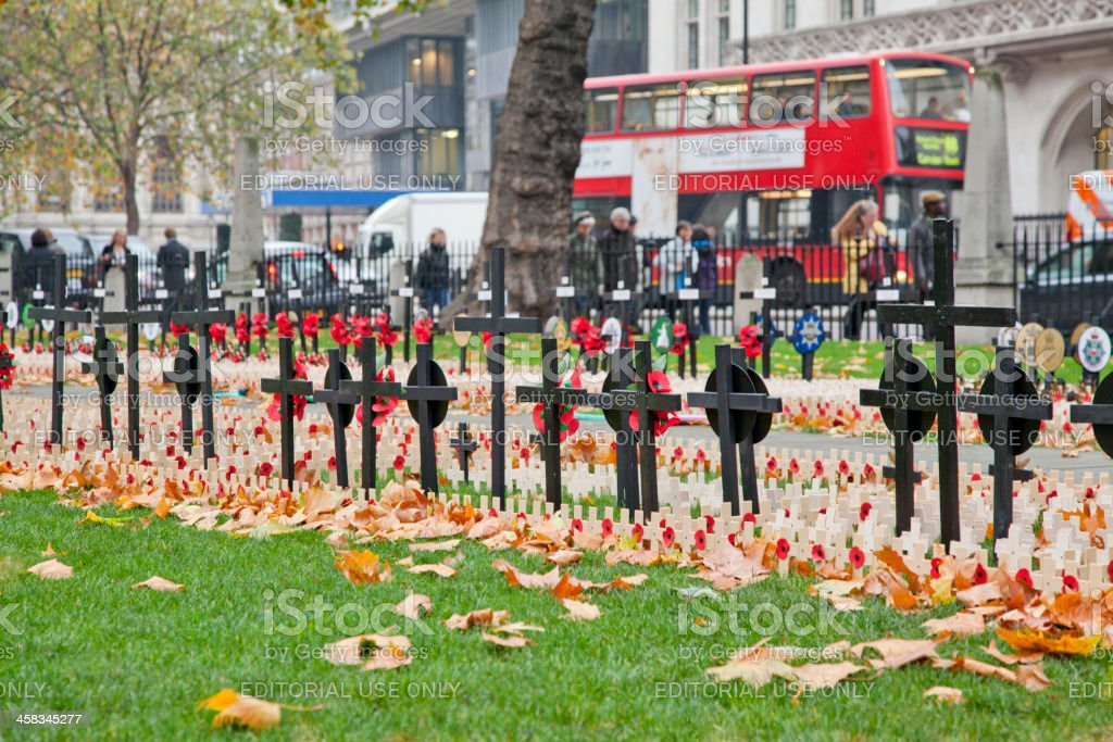 ceremonial poppy day for veterans at westminster london england UK stock photo