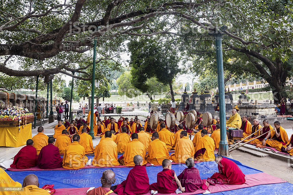ceremony under the bodhi tree stock photo