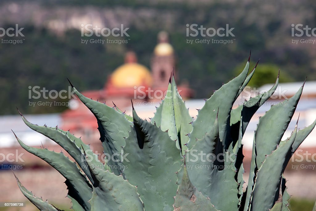 Cerocahui, Chihuahua, Mexico. stock photo
