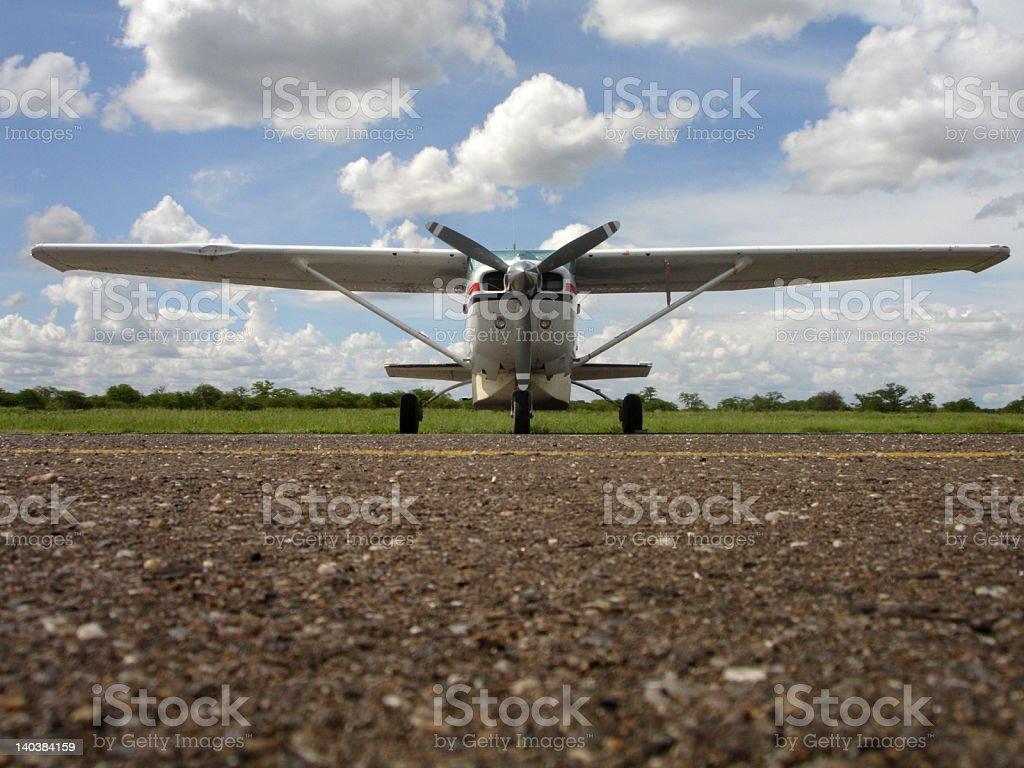 Cessna Bird Strike stock photo