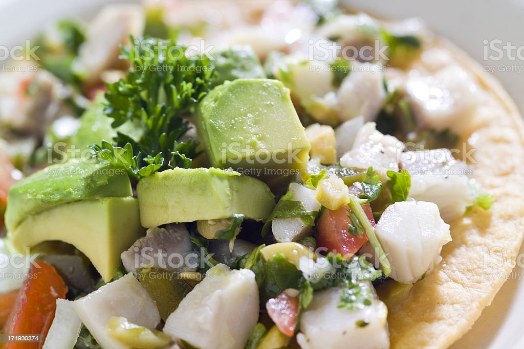 Ceviche Tostada stock photo